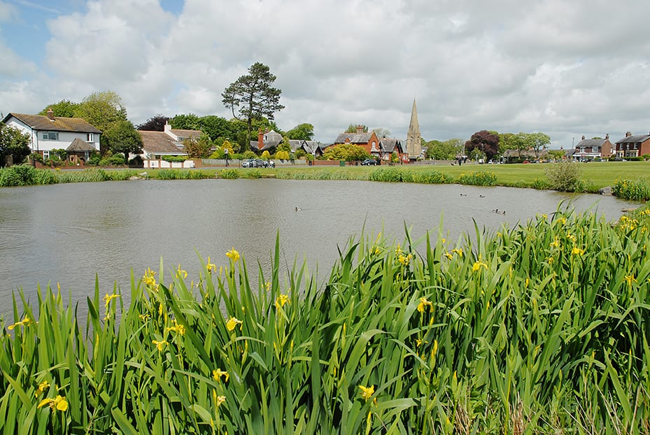 Duck Pond at Wrea Green